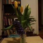 flori de primavara, primite de la iubitul meu