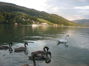 Lacul Mondsee